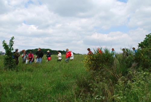 Wildkräutersuche an der Vorderen Heide, Wanderung mit dem NABU am 2.6.2012